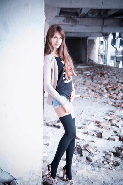 model_annam